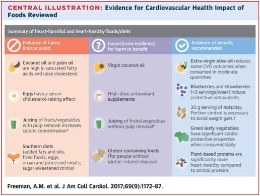 controverse-voeding-cardiovasculair-schema