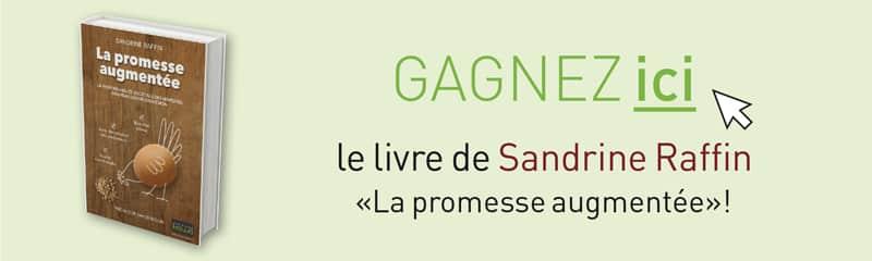 sandrine-raffin-promesse-augmentee